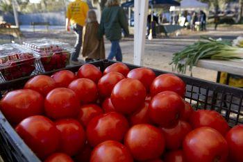 Savannah Forsyth Farmers' Market Project