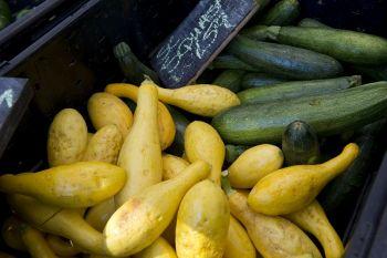 Savannah Forsyth Farmers' Market Project-5
